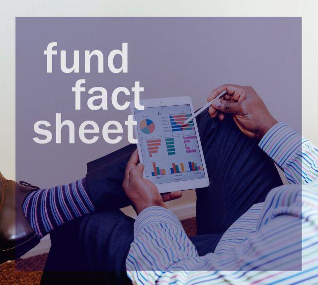 Cara Membaca Fund Fact Sheet Reksadana