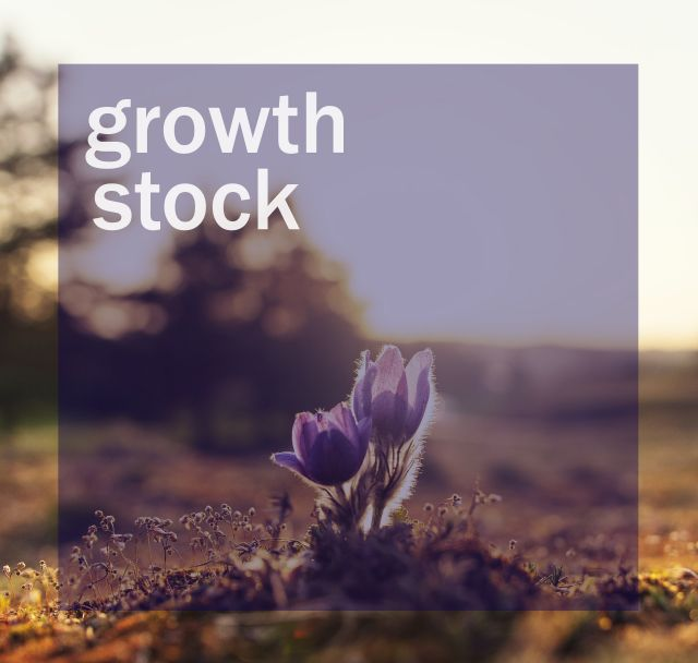 Growth Stock Investing