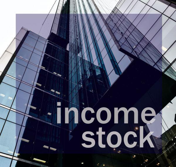 Cara Investasi  Income Stock Investing